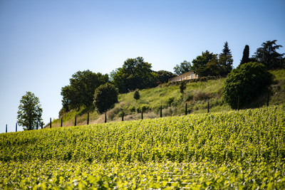 Château Quintus Grows with the Acquisition of Château Grand-Pontet
